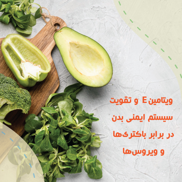 http://hakimanteb.com/wp-content/uploads/2020/12/post_hakiman_vitamin_E_va_taghviat_system_imeni_dar_barabar_bakteriha.jpg